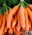 吃什么产品可以美白_美白食物排行榜10强